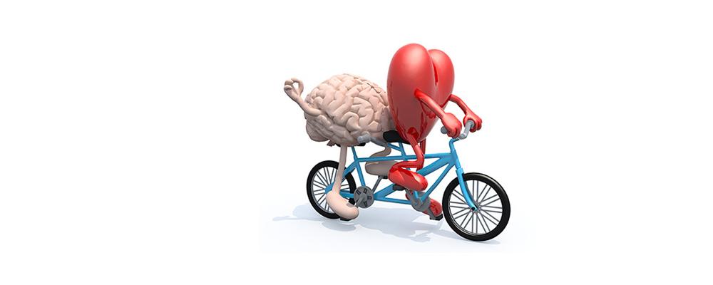 Salute E Benessere Andare In Bici E Utile Alla Prevenzione Delle Malattie Cardiovascolari Tumori E Tutte Le Cause Di Morte Precoce Favaraweb