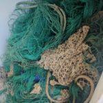 Controlli sulla filiera della pesca a bordo di pescherecci. 12000 euro sanzioni amministrative e sequestrato circa 350 kg di pescato