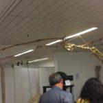 Buona presenza di pubblico alla mostra Akrasauro di Agrigento