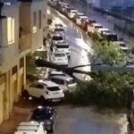 Ondata di maltempo sulla provincia, tragedia sfiorata a Agrigento: pesante albero finisce in strada