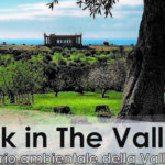 "Valle dei Templi. ""A Walk in the Valley"" domenica 1 dicembre"