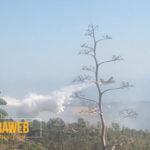 Incendio in un'area boschiva di Favara: in azione due canadair per domare le fiamme