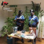 Traffico e detenzione illeciti di sostanze stupefacenti o psicotrope, arrestato in flagranza di reato un 27enne
