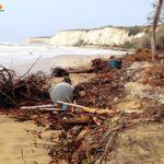Agrigento. Il vento di scirocco ha devastato il boschetto della spiaggia di Eraclea Minoa