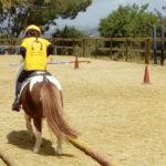 """Favara. Grande successo al """"Pony Game"""" del Centro Ippico San Benedetto"""