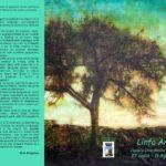 """Favara. Si inaugura domani, sabato 27 luglio presso il Castello Chiaramonte, """"Linfa Antica"""" la personale di Alessandro Crapanzano"""