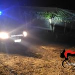 Intensificati i controlli contro i furti d'uva intorno a Castrofilippo e Canicattì