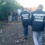 Raccolta arance a Ribera-: un arresto e una denuncia per caporalato