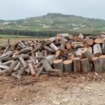Rubano legna dai boschi della Regione a Naro: arrestati.