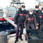Motovedetta dei Carabinieri di Lampedusa salvano  tartaruga Caretta Caretta