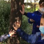"""Concorso nazionale """"Raccontami l'autismo anche in dad"""": gli alunni dell'I.C. """"Falcone Borsellino"""" premiati per la realizzazione del video """"Mani come rami"""""""
